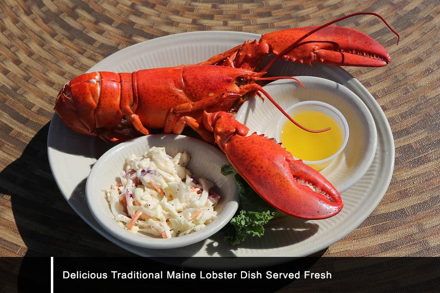 Traditional maine lobster dish